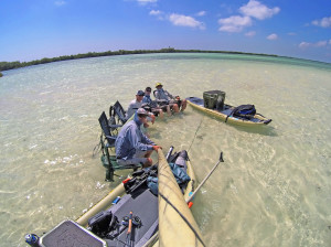 Flats Fishing in the Yucatan
