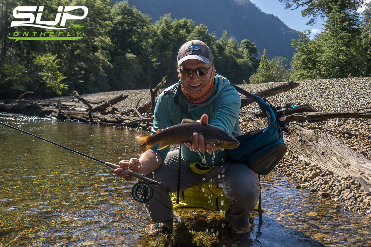 Chilean fly fishing catch